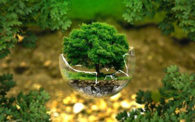 La inversión responsable es, ahora, el centro de atención (EdR)