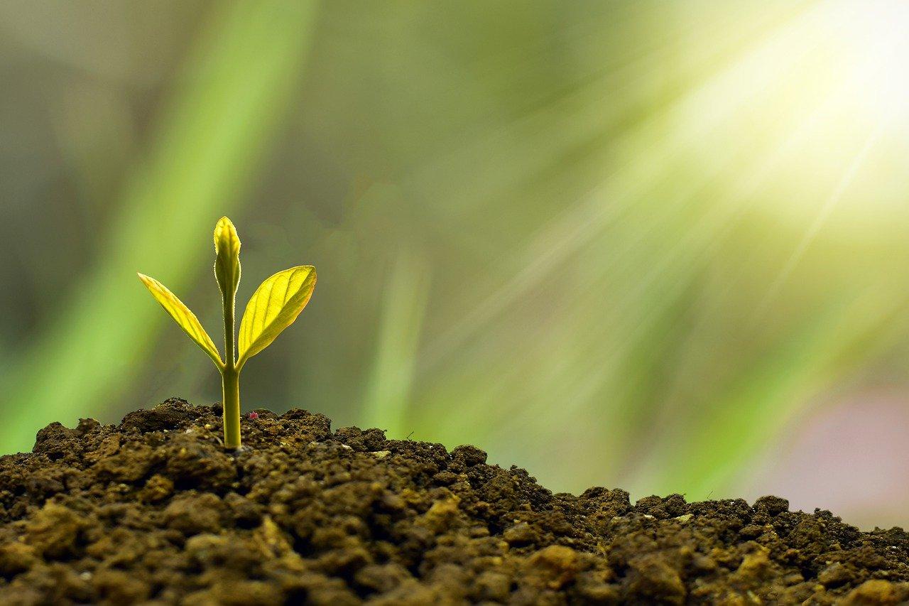 ESG e impacto