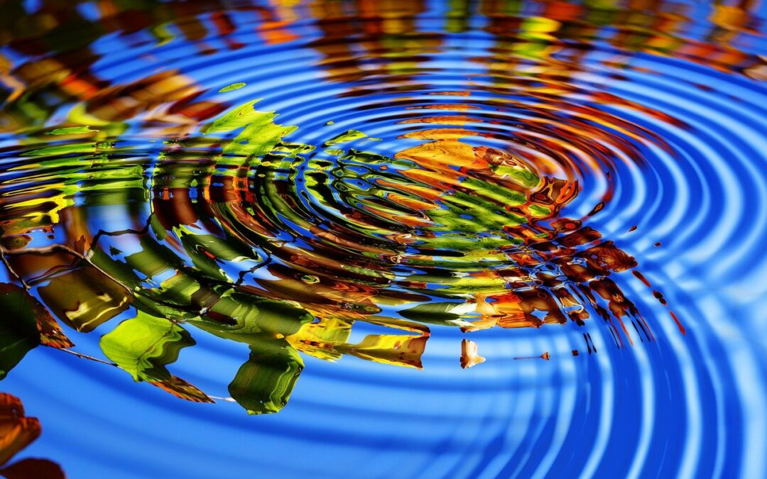 El agua: ¿Una fuente de vida y de rendimientos financieros?