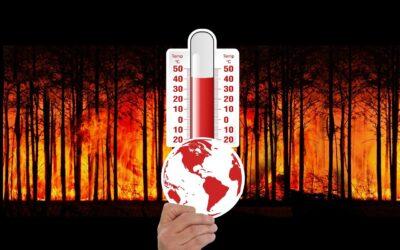 A algunos les gusta el calor: los verdaderos beneficiarios del calentamiento global